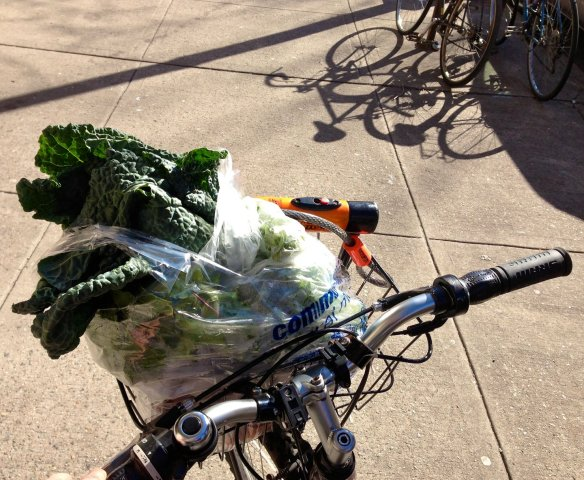 grocerybiking_rev