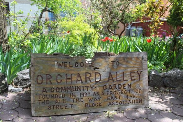 rsz_orchardalley_sign