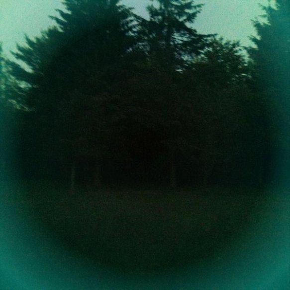 rforest_circle_hipstamaticRev
