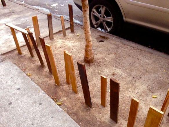 a minimalist tree bed on Loisaida Avenue
