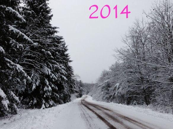 2014_photo