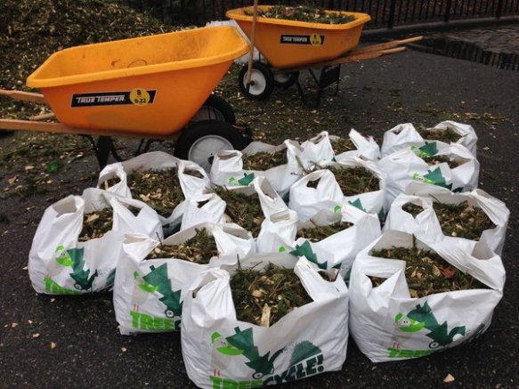 bags of pine mulch for the taking