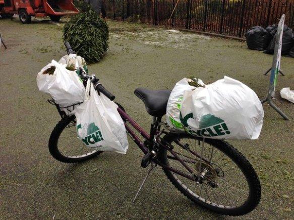 my cargo bike