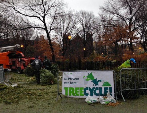 the chipper in Tompkins Square Park