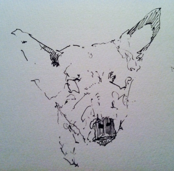 Millie drawn by artist James Cooper. studio cooper.com
