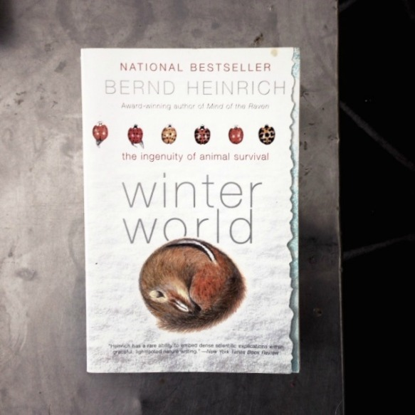 A great read for the winter, with beautiful illustrations by the author