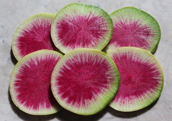 watermelonradish