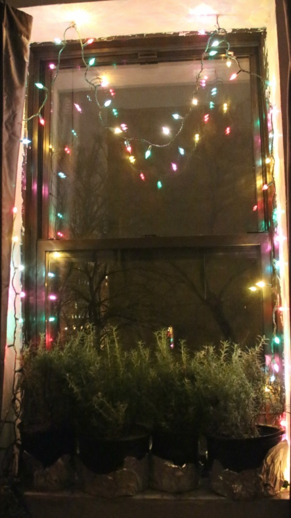 xmaswindow