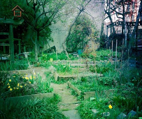 Sixth & B Garden