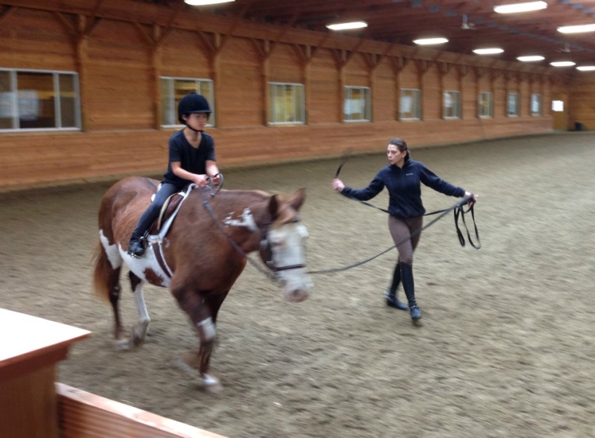 Camelia Montalvo dressage instructor New Paltz, New York