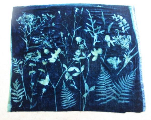 sunprintfabric