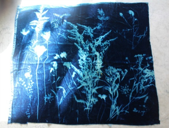 sunprintfabric2